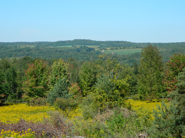 lofty ellicottville nature