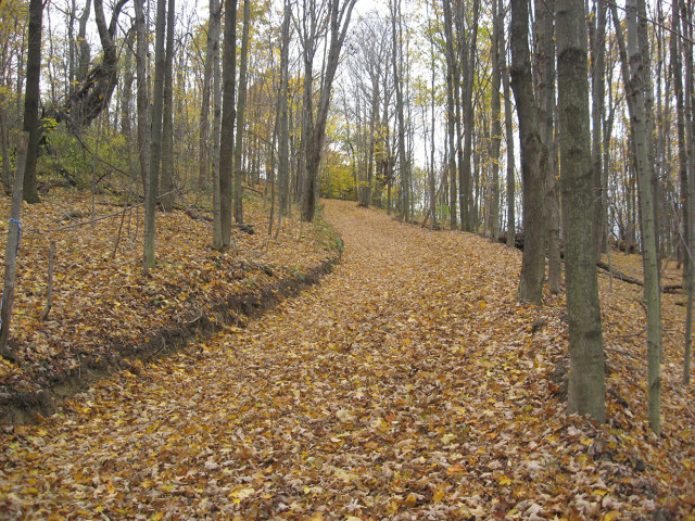 Deeded 2 miles of nature trails for mountain biking, snowshoeing , hiking